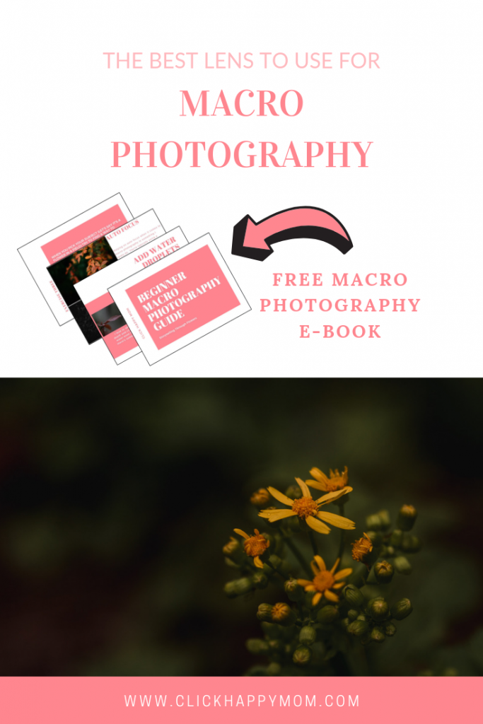 The BEST Lens to Use for Macro Photography