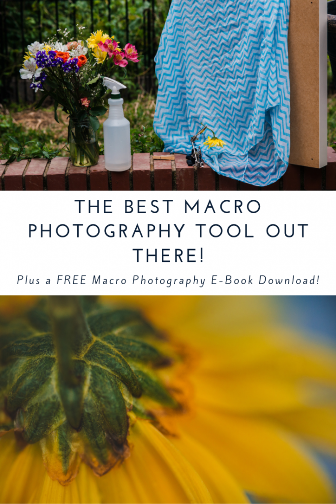 The BEST Macro Photography Tool