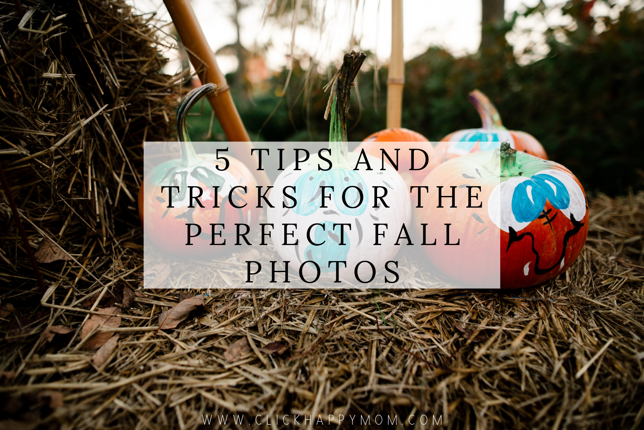 5 Tips and Tricks For the Perfect Fall Photos