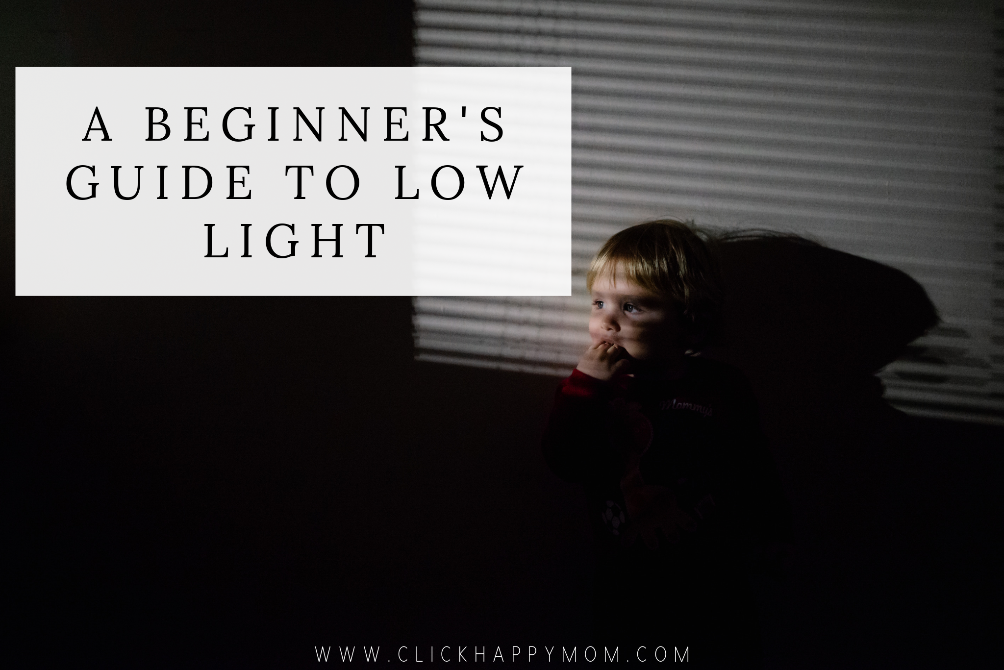 A Beginner's Guide to Low Light